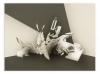 Mirko Reisser (DAIM) - DAIM - all direction - steingrau dkl, 2013, Spraypaint on wood, 30 x 40 x 3 cm, Edition of 3