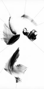 RZ-Head_I_2016 K